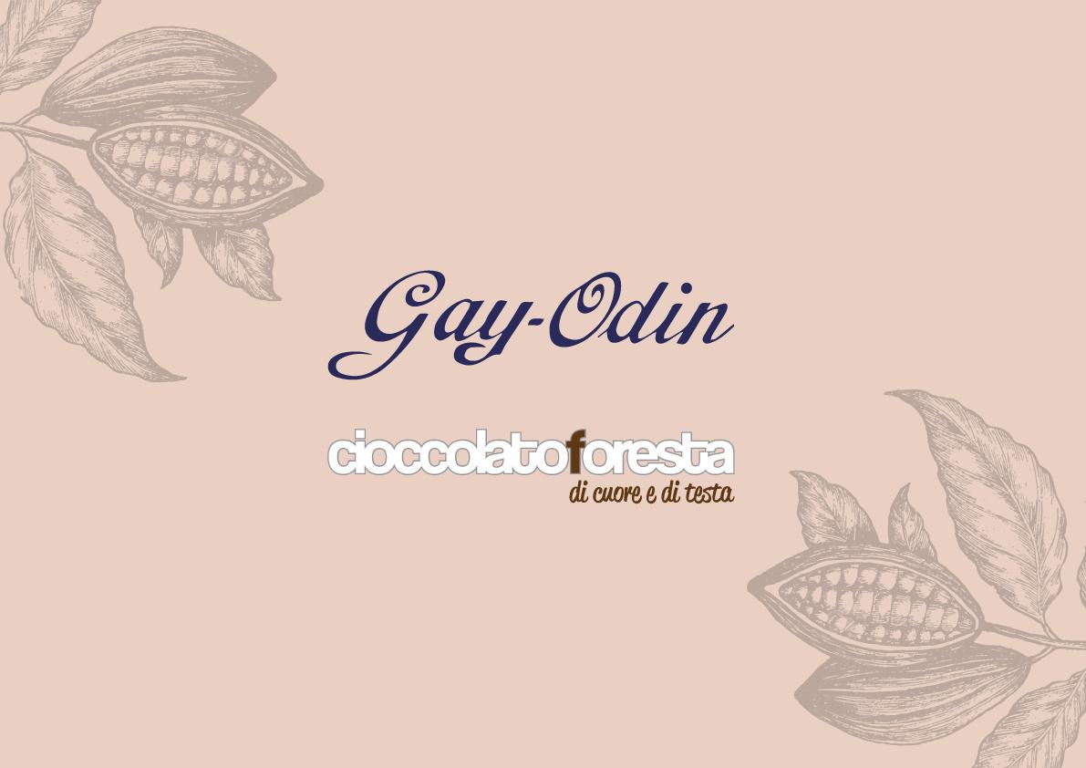 gayodin-logo